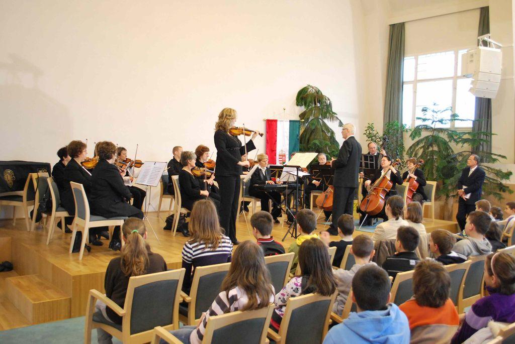 Pest Megye Szimfonikus Zenekara - 2010.02.25.