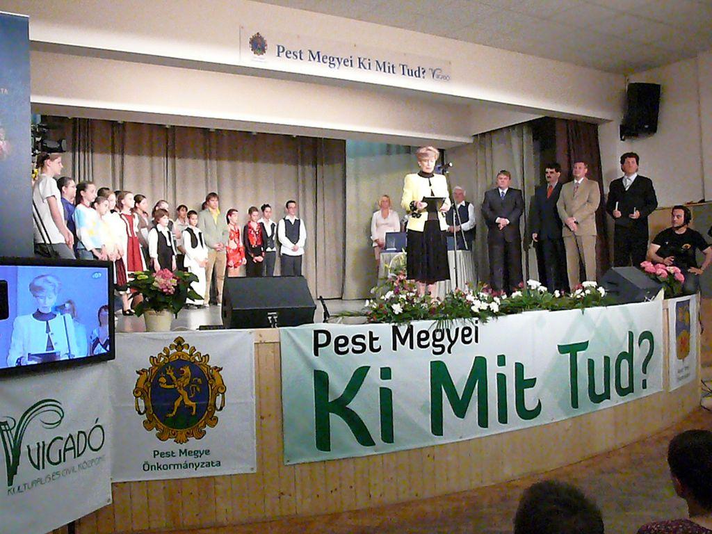 Pest Megyei Ki Mit Tud? - 2008