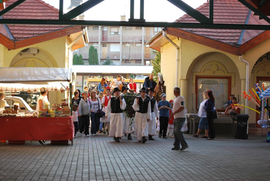 Szüreti Sokadalom - 2009.10.03.