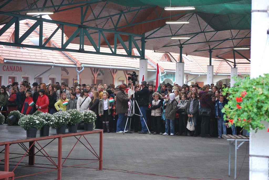 Városi ünnepség - 2009.10.23.