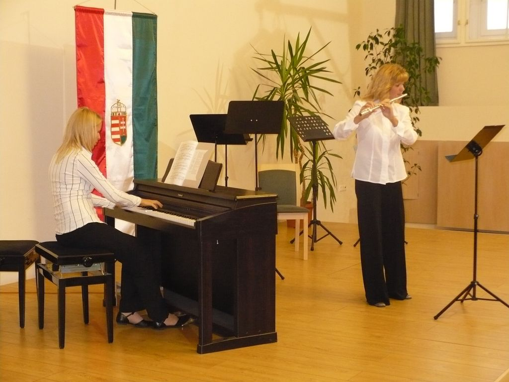 Zongorát a városnak - jótékonysági koncert - 2008.09.12.